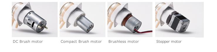 Motor variation
